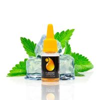 Flavour Vapour Ice Mint 10ml E-liquid