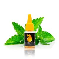 Flavour Vapour Strong Mint 10ml E-liquid